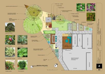 contemporary garden backyard